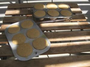 Orange Spice Muffins