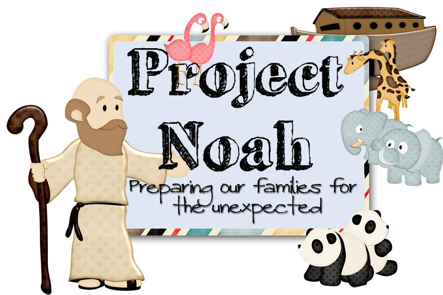 Project Noah – Month 6